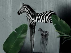 Baumwoll-Jersey Paneel Wild Zebra