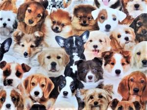 Dekorleinen Hunderassen