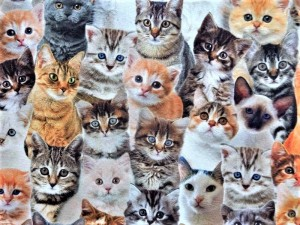 Baumwoll-Leinen-Katzenbabys