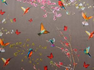 Baumwoll-Jersey Vögel hellbraun