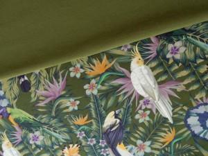 Baumwoll-Jersey Paradiesvögel grün