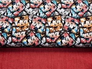 K45 Baumwoll-Jersey Mickey