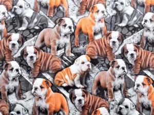 Baumwoll-Jersey Hunde