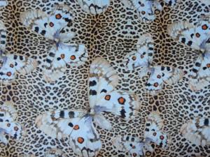 Baumwoll-Jersey Leo-Schmetterling